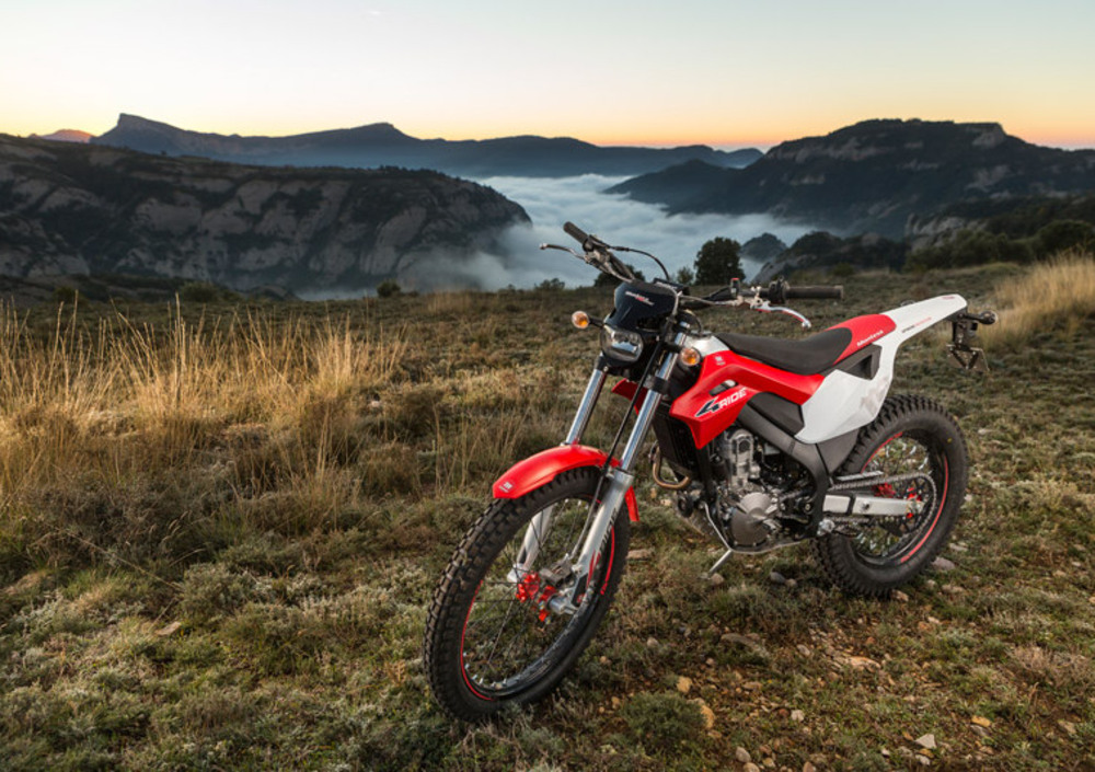 Montesa 4 Ride 260 (2016 - 17) (3)