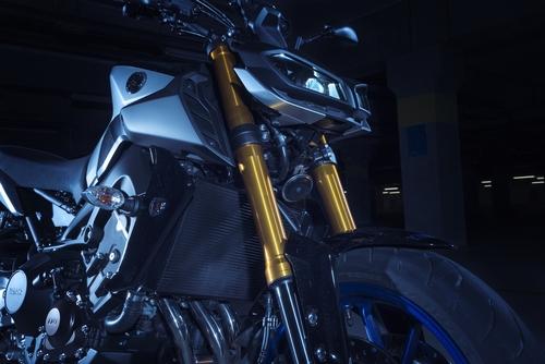 La forcella KYB, con foderi anodizzati oro, ha le regolazioni su entrambi gli steli