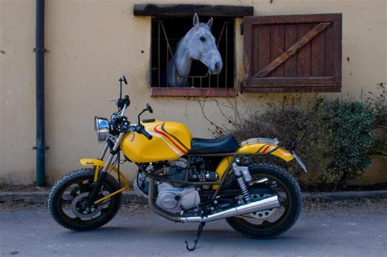 Le strane di Moto.it: Cagiva Alazzurra 350 Baby Carole