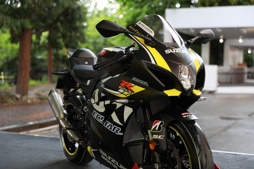 Suzuki GSX-R 1000 BeeRacing. Special replicabile (4)