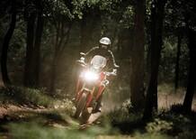True Adventure Offroad Academy, i corsi fuoristrada Honda