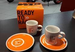 Tazzine KTM nuova collezione 2019