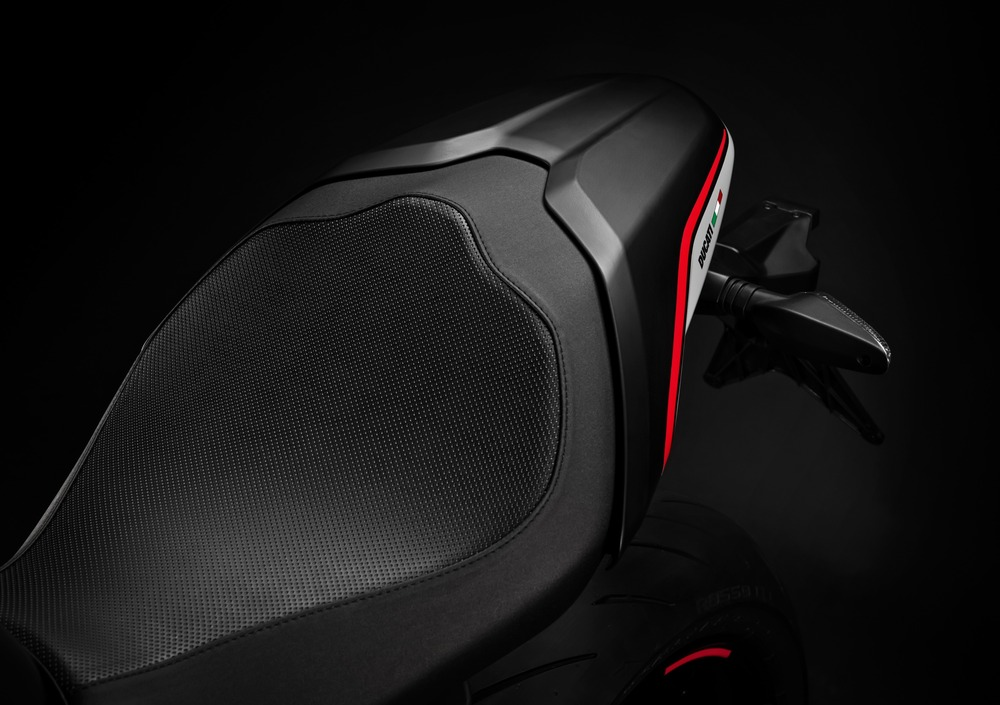 Ducati Monster 821 Stealth (2019) (3)