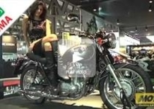 Kawasaki W800. Intervista a Sergio Vicarelli