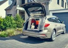 Ford Focus Wagon, progettata (anche) per la sicurezza dei cani