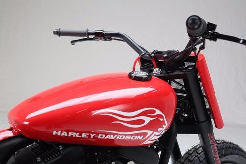 Harley-Davidson XL1200 Roadster by Shaw Harley-Davidson (9)