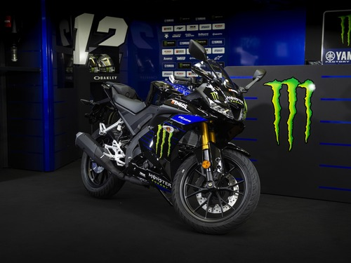 Yamaha YZF-R125 Monster Energy 2019: MotoGP replica (4)