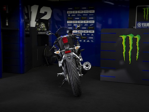 Yamaha YZF-R125 Monster Energy 2019: MotoGP replica (7)