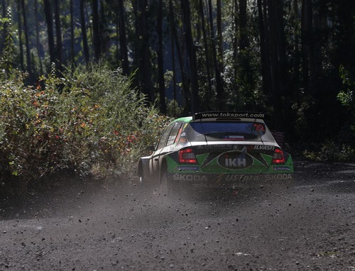 WRC, Rally Cile 2019: le foto più belle (8)