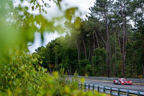 24 Ore di Le Mans 2019, pole per Toyota (9)