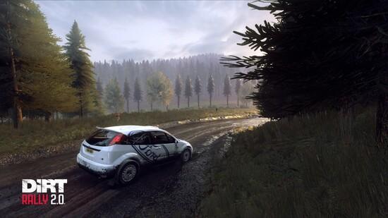 DiRT Rally 2.0 offre un buon modello di guida e una grafica quasi fotorealistica. WRC 8 invece punta più sull'esperienza di guida pura