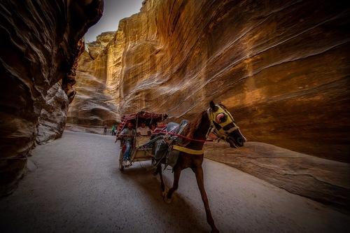 Jordan Baja. Petra. La Gallery. Un altro buon motivo... (4)