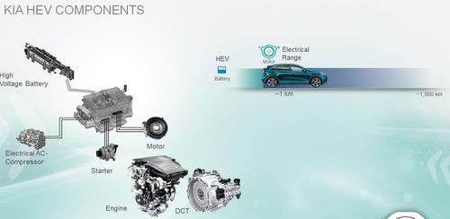 Quale ibrido, Confronto: motorizzazioni HEV e PHEV sulla stessa auto [schede tecniche] (4)