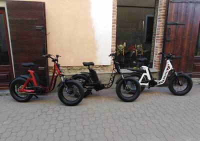 Fantic Motor Issimo (2019 - 21) - Annuncio 7956914