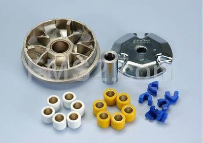 Variatore speed control (Polini), ricambio 241632 Polini Motori - Annuncio 8037748
