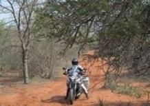 Planet Explorer 2 South Africa. In viaggio con i rinoceronti