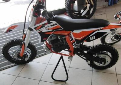 Altre moto o tipologie Minimoto - Annuncio 8339182