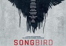 Una Ducati Scrambler 1100 nel thriller Songbird