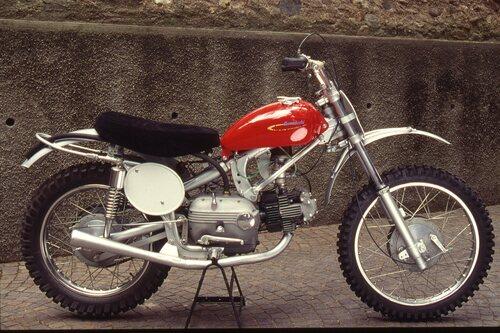 Della 250 da cross con telaio realizzato dalla stessa Aermacchi sono stati costruiti pochissimi esemplari nel 1959-60. La forcella era una Arces a perno avanzato. In seguito è stato usato un telaio Muller