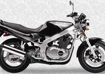 Suzuki GS 500 E (1989 - 97)