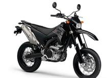 Yamaha WR 250 X (2008 - 13)