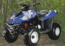 E-Ton Vector ST 250