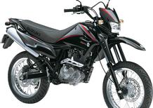 Suzuki DR 125 SM (2009 - 13)