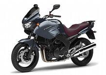 Yamaha TDM 900 ABS (2002 - 13)