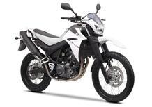 Yamaha XT 660 R (2004 - 16)