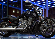Harley-Davidson V-Rod Muscle (2009 - 17)
