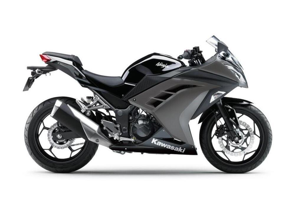 Kawasaki Ninja 300 (2012 - 14) (4)