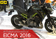 Kawasaki Z900 2017 ad EICMA 2016: video