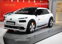 Xavier Peugeot: «Citroen? Saremo originali e innovativi, non low cost»